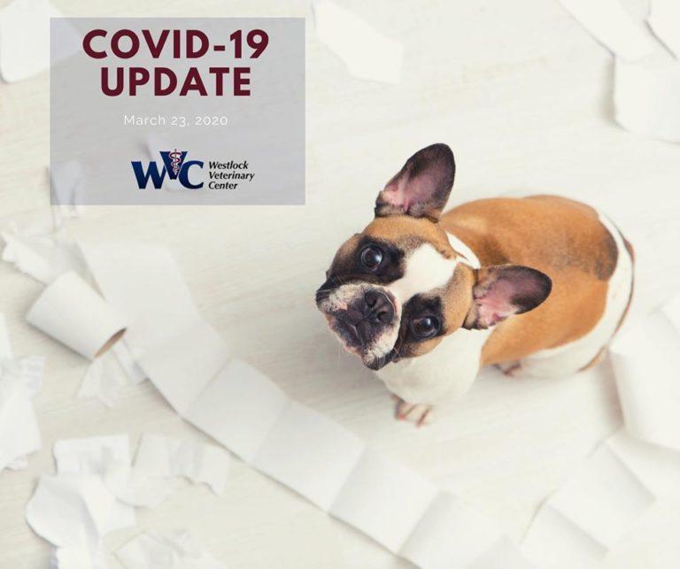 Westlock Vet - Covid-19 Vet March 23